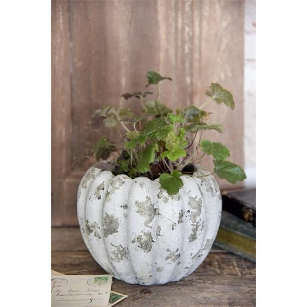 Flot Vase / Krukke Med Patina Beige-31