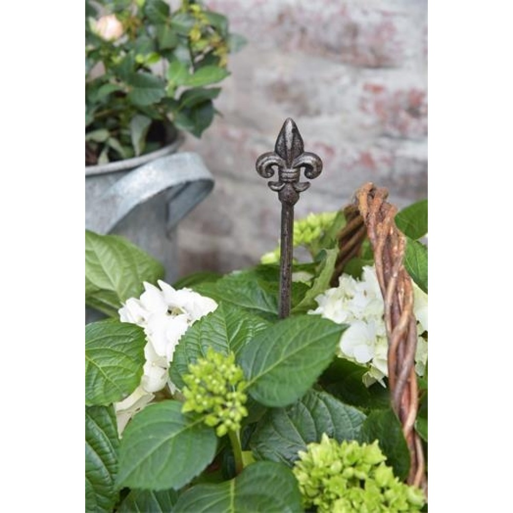Plantespyd med Fransk Lilje-31