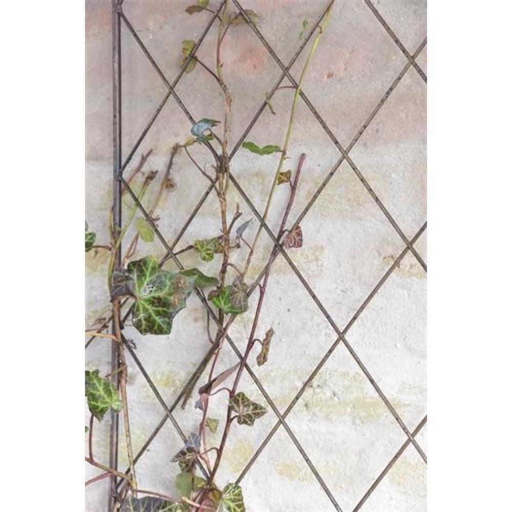Espalier til Væg Antik brun-31