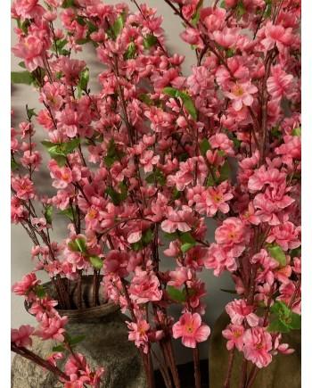 Japansk Kirsbærtræs Gren-20