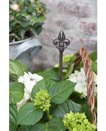 Plantespyd med Fransk Lilje-20