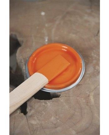 Bright Orange Vintagepaint